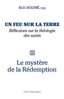 Un feu sur la terre, réflexions sur la théologie des saints (Tome 6)