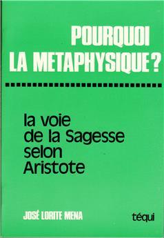 Pourquoi la métaphysique ?