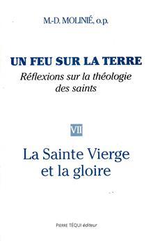 Un feu sur la terre, réflexions sur la théologie des saints (Tome 7)