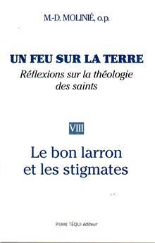 Un feu sur la terre, réflexions sur la théologie des saints (Tome 8)