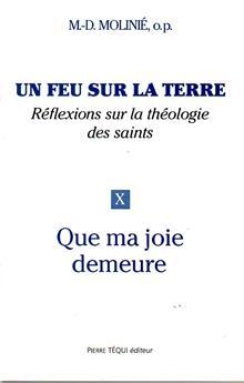 Un feu sur la terre, réflexions sur la théologie des saints (Tome 10)